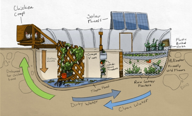 Garden pool a nonprofit organization to develop and for Closed loop gardening